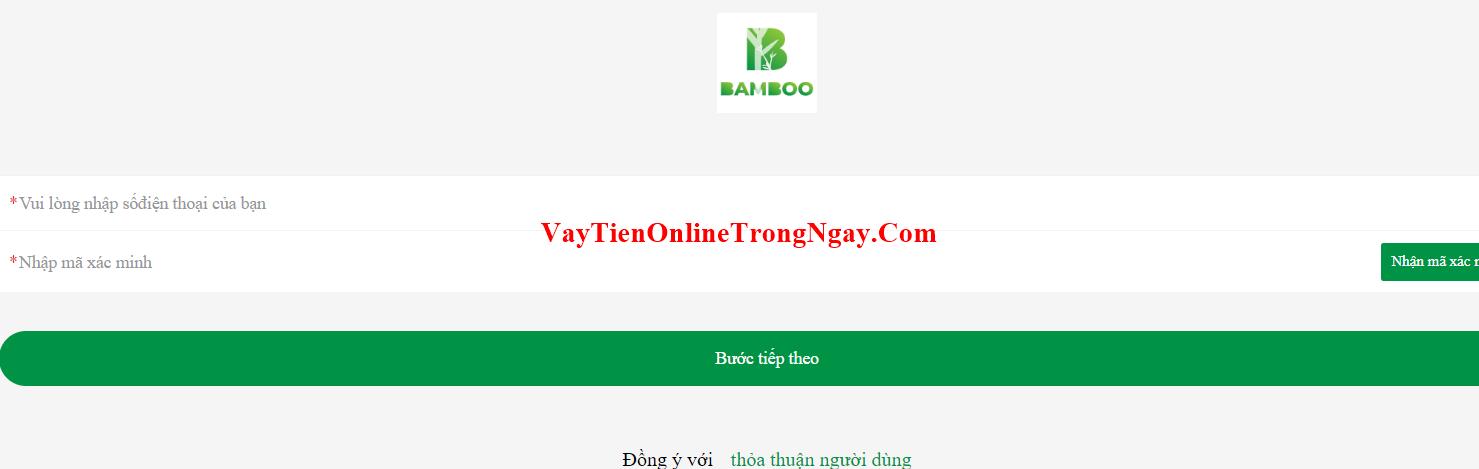 h5.bamboovay.com